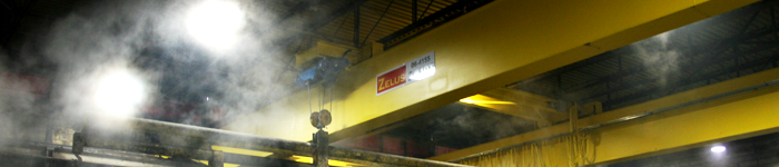 Zelus offers a full line of overhead bridge cranes and hoists.